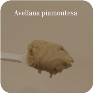 Avellana piamontesa